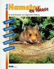 Buch cover - Mein Hamster zu Hause